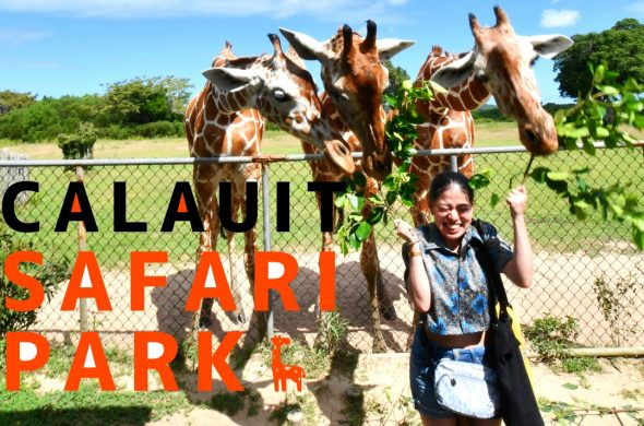 Calauit Safari tour