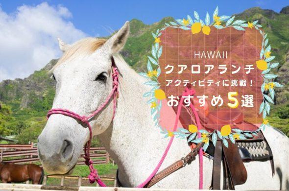 HAWAII 5 activities_