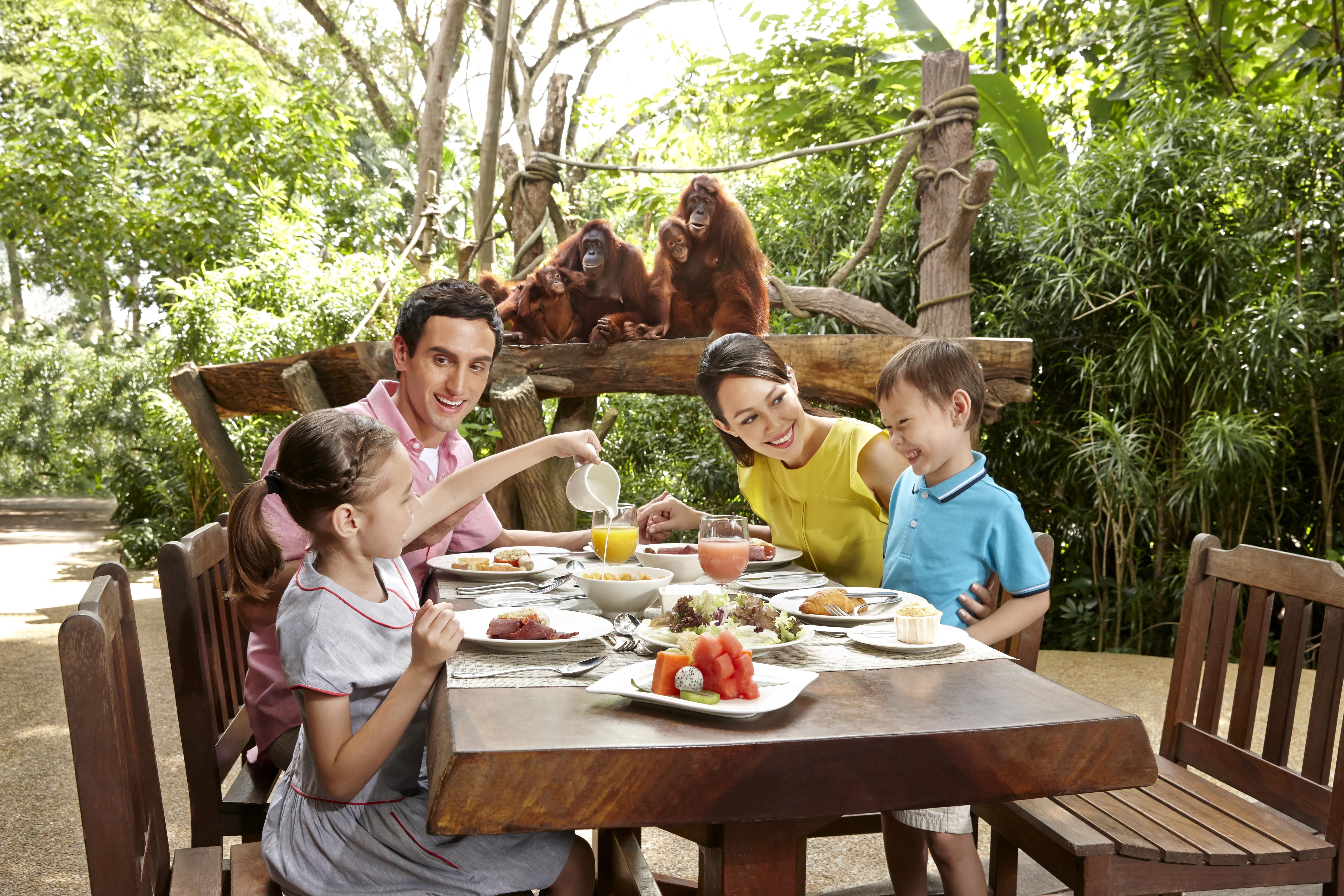 オランウータンと食事ができる ジャングルブレックファスト