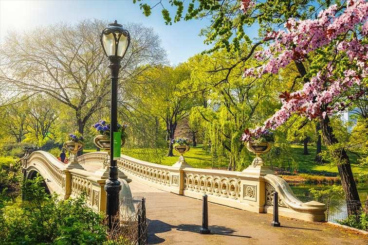 ニューヨークの春