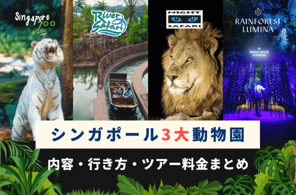自力で行く?ツアーで行く?シンガポールの3大動物園【ナイトサファリ・リバーサファリ・シンガポール動物園】の内容・行き方・料金まとめ