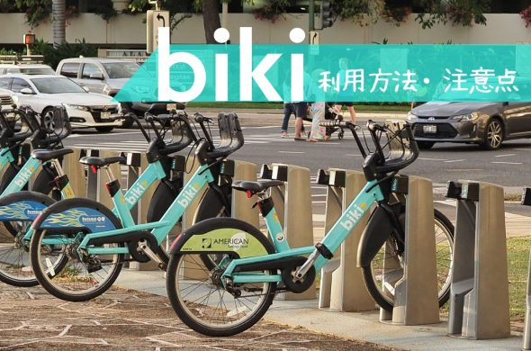 hawaii biki top banner