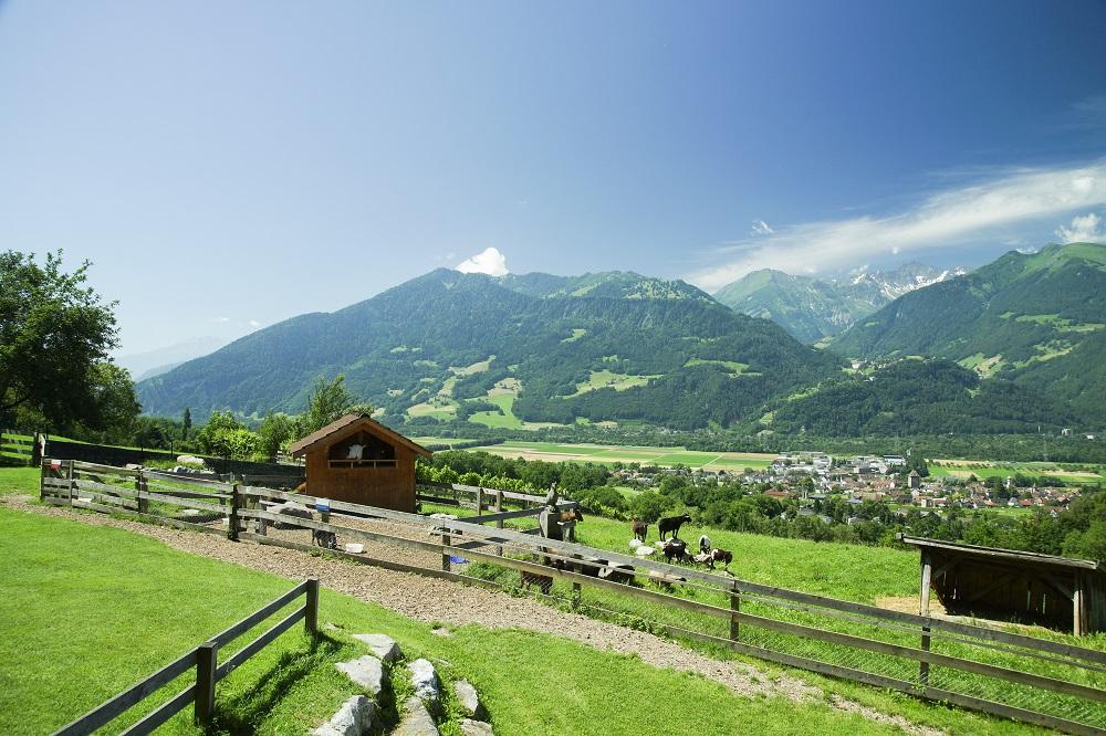 スイス 日本からの入国制限解除