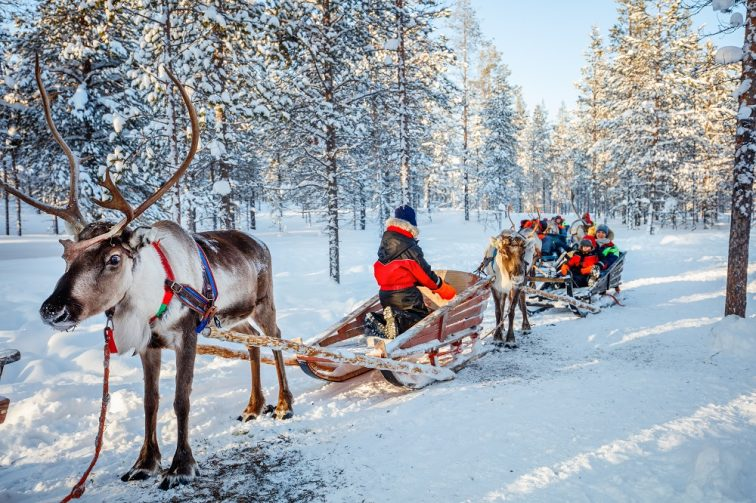 フィンランド入国制限解除