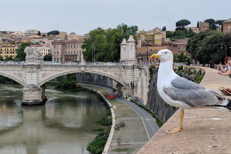 ローマのタイバー川(テベレ川)