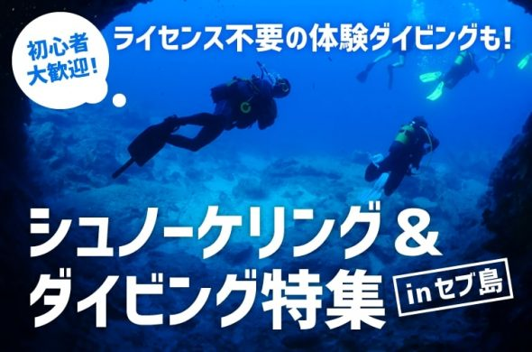 no license for diving in Cebu