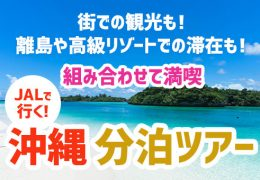 沖縄・分泊ツアー 画像
