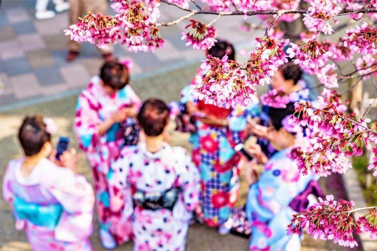 東京 お花見人気ランキング 隅田川