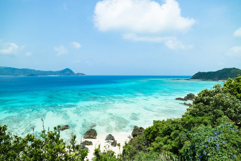 Tropical,Beach,Paradise,With,Clear,Turquoise,Blue,Water,,Amami,Oshima