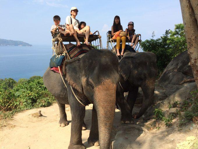 象の背中から見える景色はちょっと違うぞ