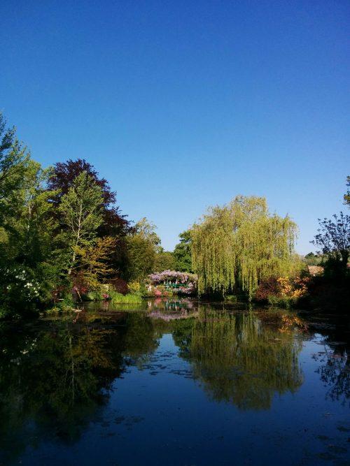 ジベルニー睡蓮の庭
