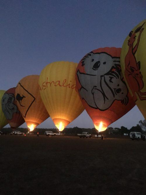 コアラ・カンガルー柄のかわいい気球