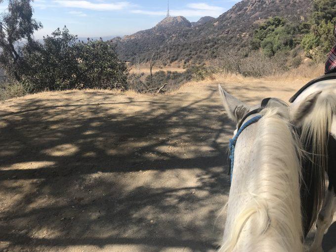 サンセットランチハリウッドの乗馬体験