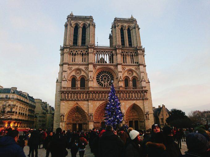 夕暮れ色に染まるクリスマスツリーとノートルダム聖堂