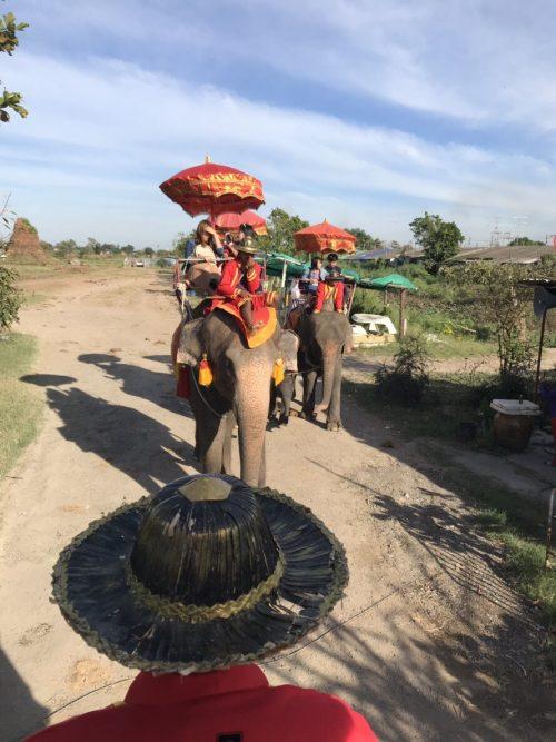 アユタヤの象乗り体験。子象連れの母親象もいました。