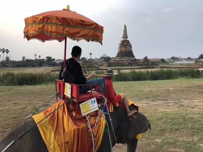 アユタヤで象乗りを体験。