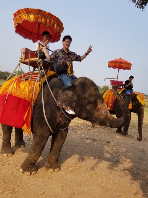象にのっているだけなのに、楽しい!