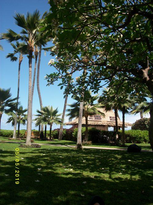 カアナパリビーチホテル