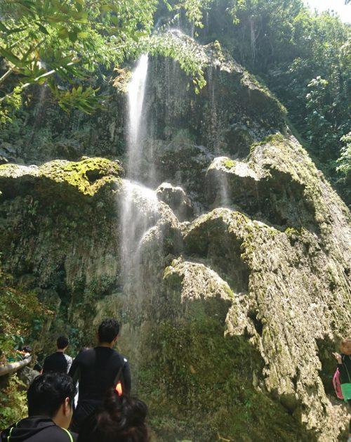 ジャングルの奥に見えてくる「ツマログの滝」