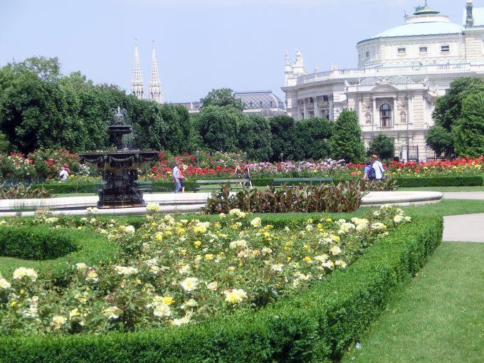 バラが満開のフォルクス庭園と ブルク劇場
