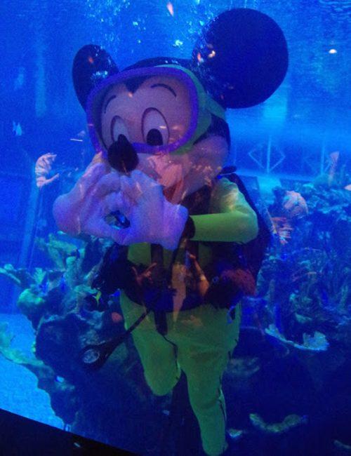 水の中のミッキーに感激!!!