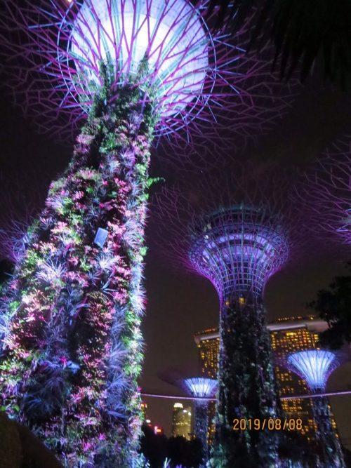 美しい国シンガポール