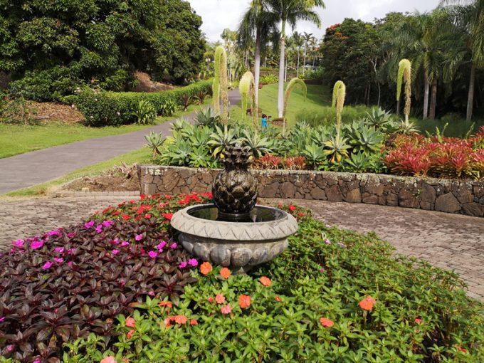南国の植物でいっぱいの園内