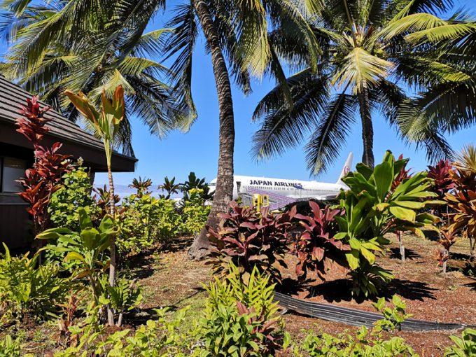 南国植物が生い茂る「コナ空港」