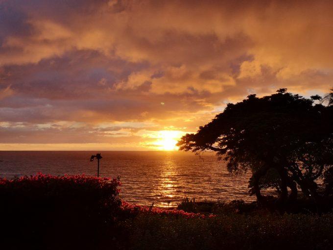 燃えるような夕日を眺めながら素晴らしいディナーを堪能