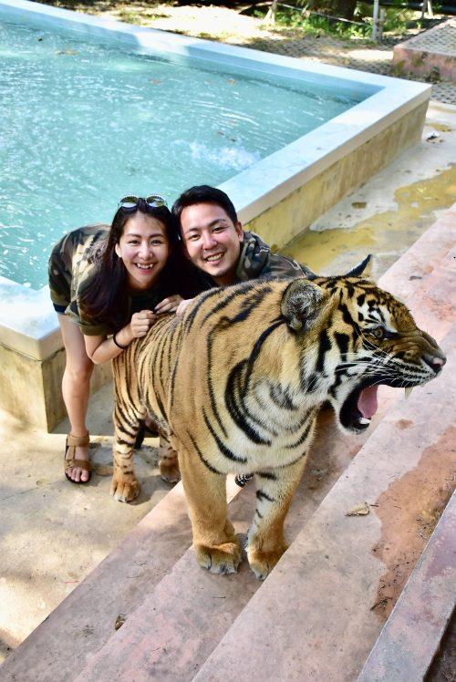 タイガーキングダムで虎と記念撮影!