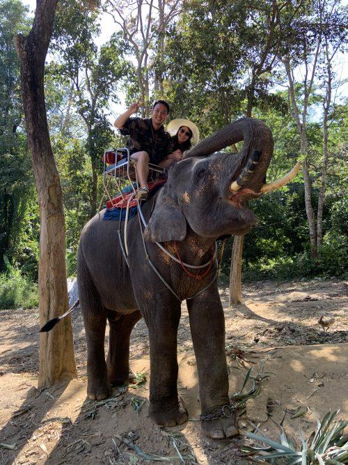 モンコという名前の象です♪可愛い!