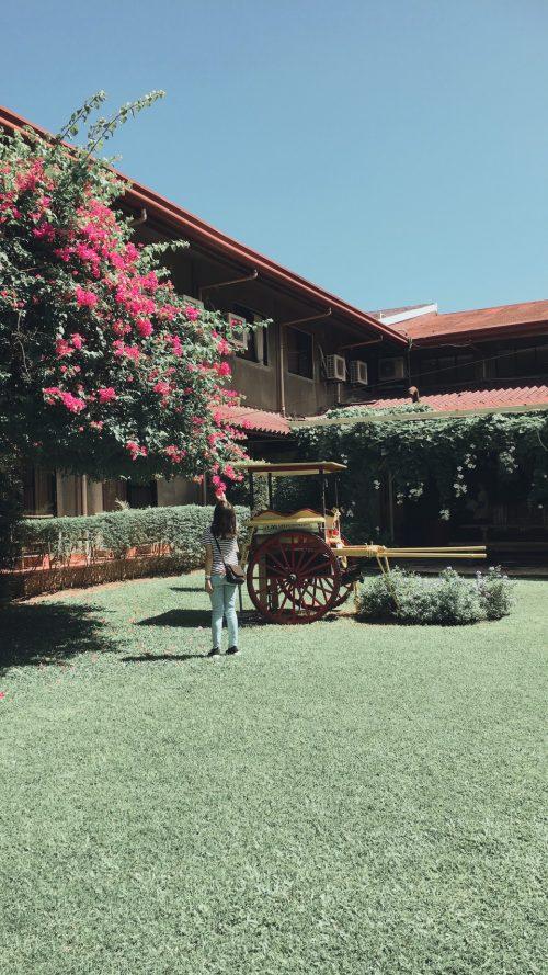モンテベロ ヴィラ ホテルの庭