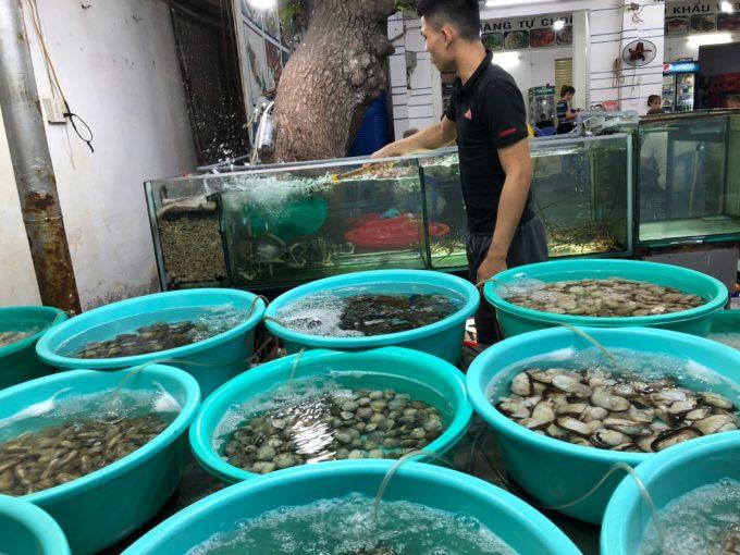 たくさんのたらいに新鮮な魚介類!