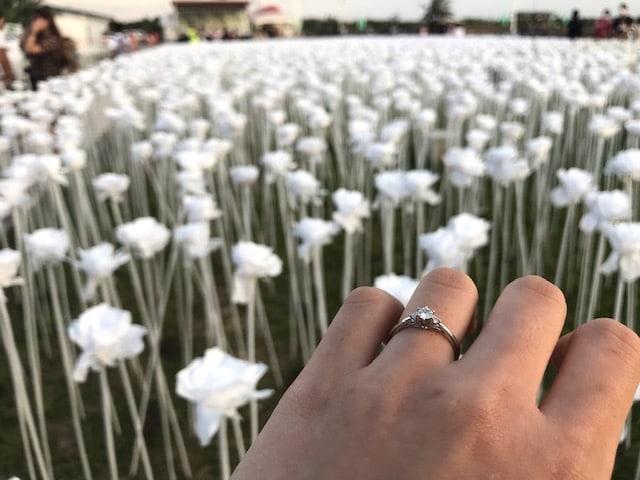 薔薇と指輪