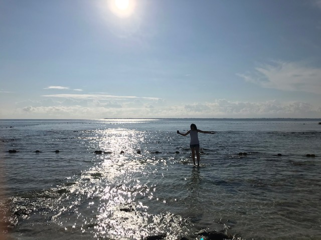 ホテルのプライベートビーチ。魚もいました
