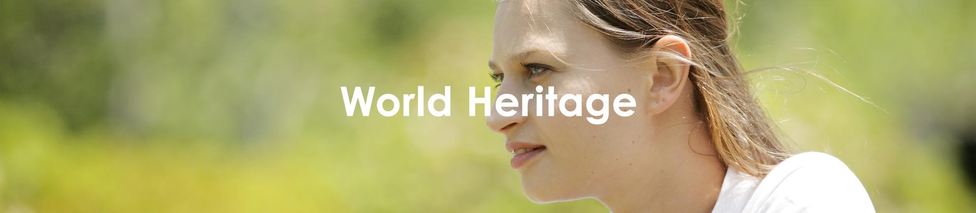 トラベル・スタンダード・ジャパンで行く世界遺産をみる海外旅行