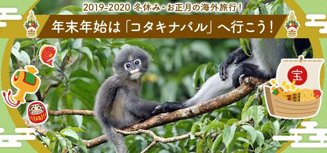 2019-2020 冬休み・お正月の海外旅行! 年末年始は「シンガポール」へ行こう!