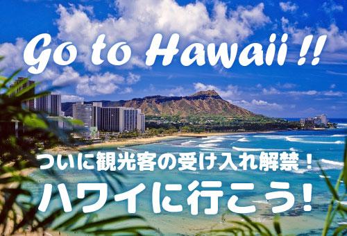 航空券を予約して、ハワイへ行こう!