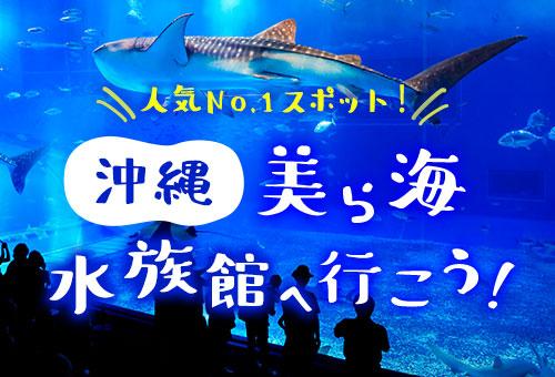 沖縄美ら海水族館へ行こう!